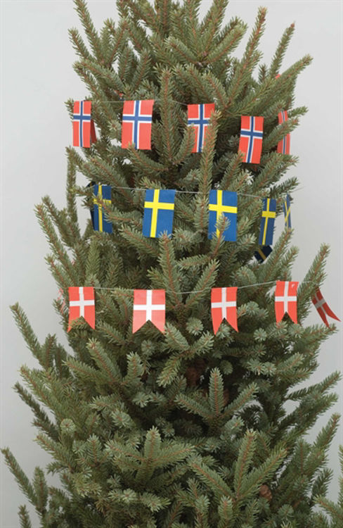 Picture of Flag Garlands
