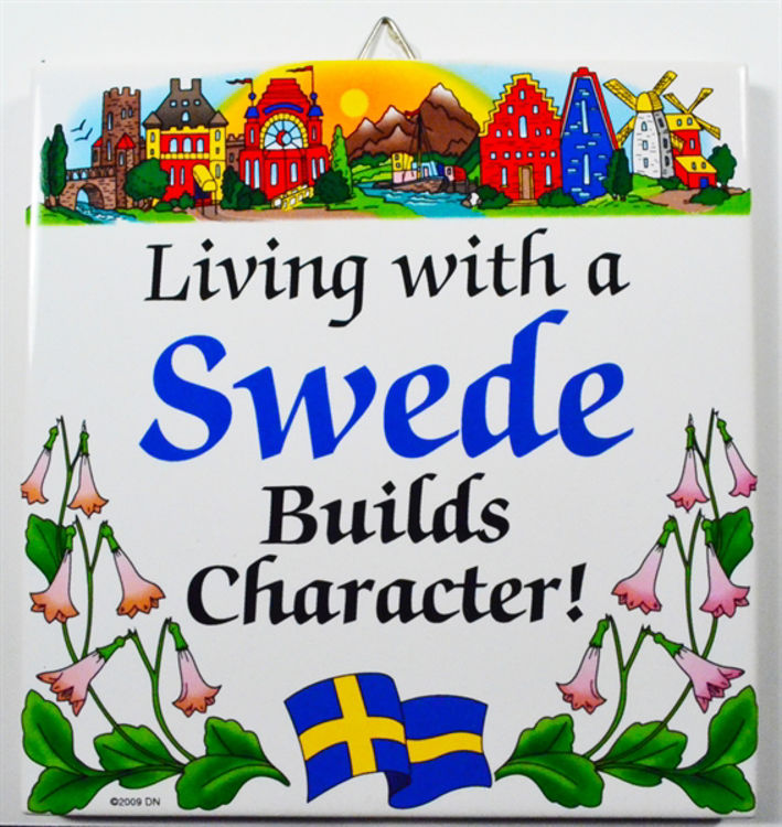 Picture of Living with a Swede....Swedish Tile