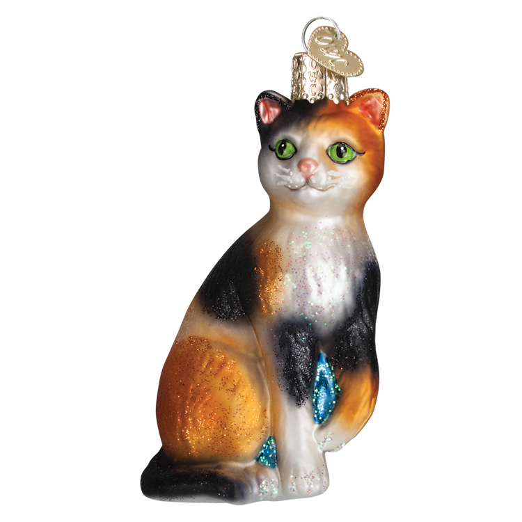 Picture of Calico Cat