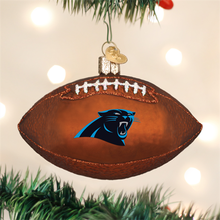 Picture of Carolina Panthers Football