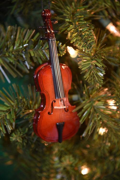 Picture of Cello