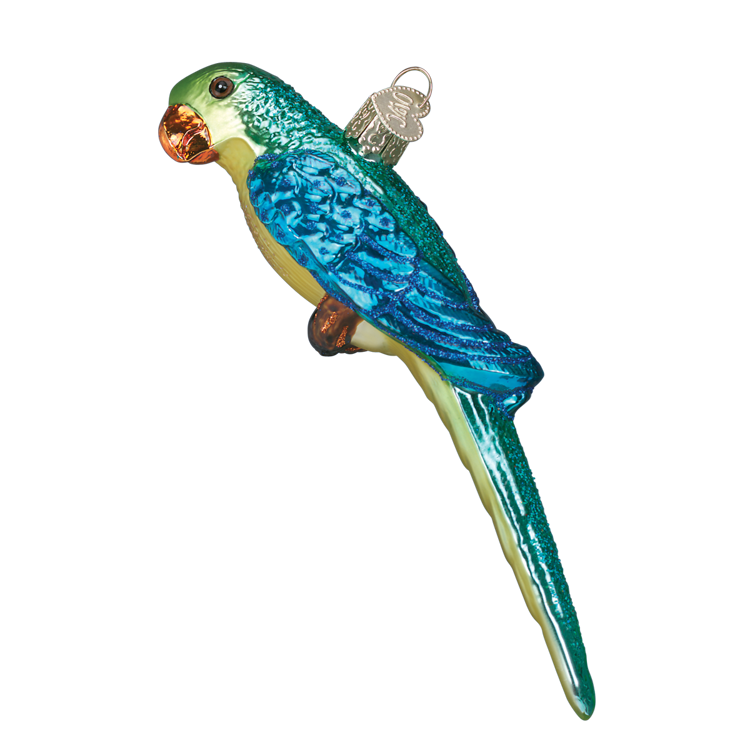 Picture of Parakeet