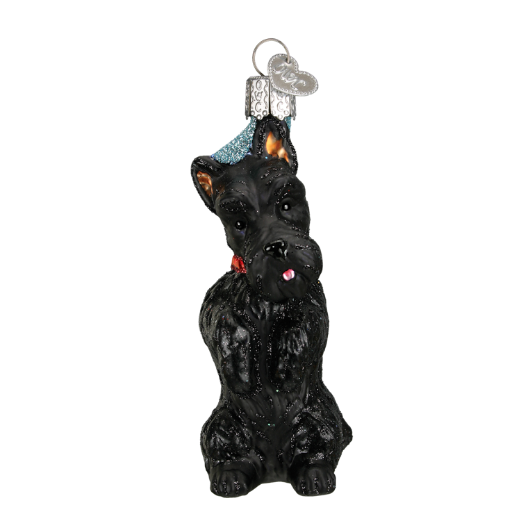 Picture of Scottish Terrier