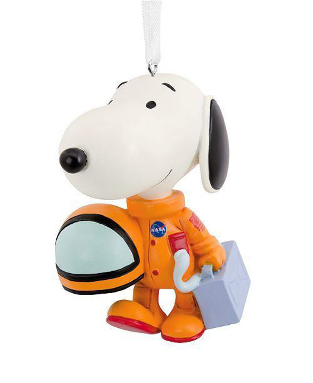 Picture of Snoopy Astronaut