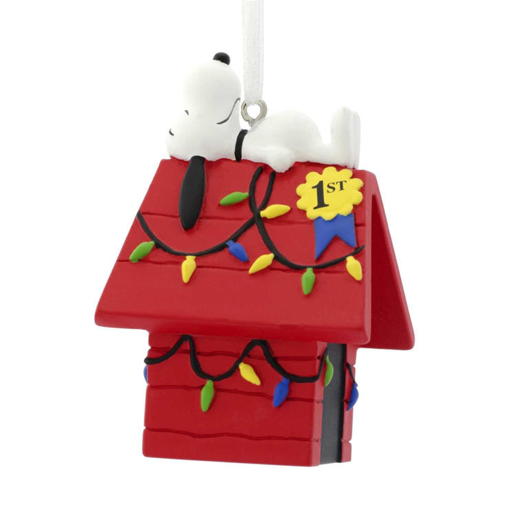 Picture of Snoopy Doghouse
