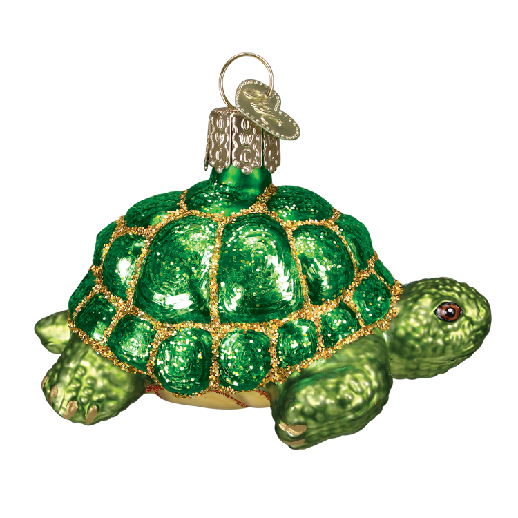 Picture of Tortise